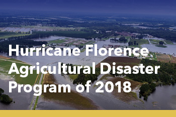 Hurricane Florence Agricultural Disaster Program of 2018